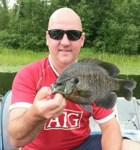 Even big bull gills get fooled by bobbers from time to time!