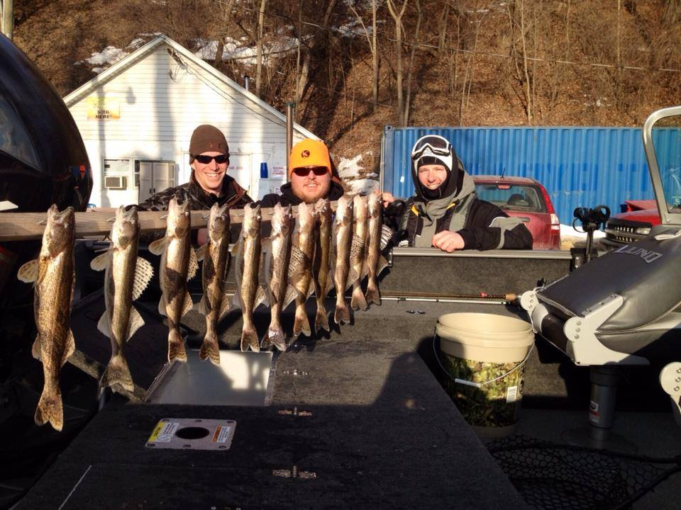 Some winter walleyes and saugers!